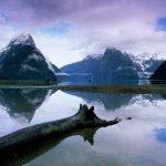 Los fiordos de Nueva Zelanda