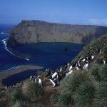 Isla Macquarie, donde emerge la tierra