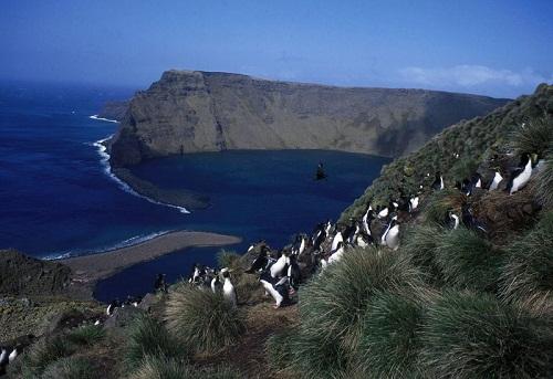 Isla Macquaire