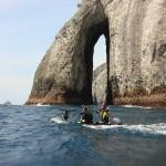 La isla de Malpelo, la gran Roca Viviente