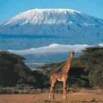 Parque Nacional del Kilimanjaro, Tanzania