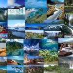 ¿Qué requisitos se deben cumplir para ser declarado Patrimonios?