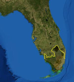 Región de los Everglades