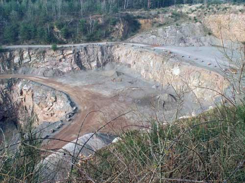 Resultado de imagen de yacimiento fosilifero de messel